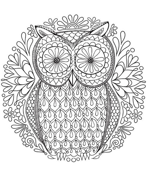 500x589 Intricate Owl Coloring Pages Detailed For Adults Color Bros