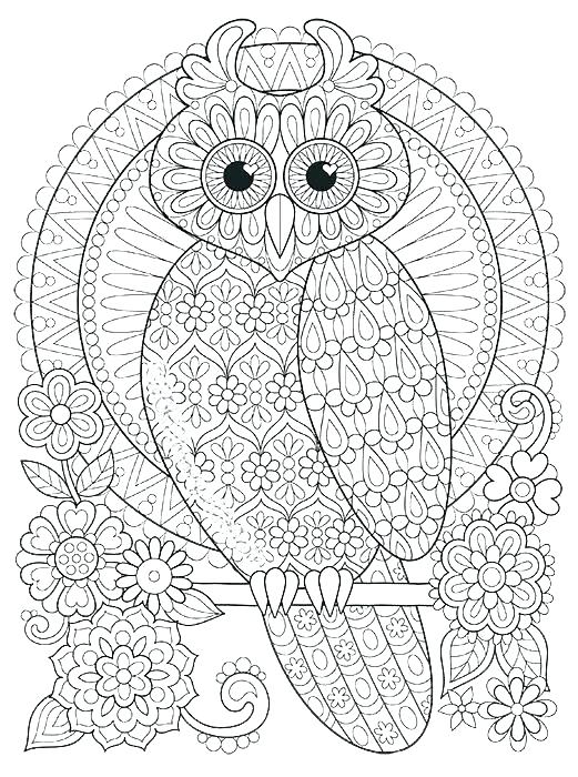 521x700 Owl Coloring Pages Free Printable Owl Color Pages Color Your Own