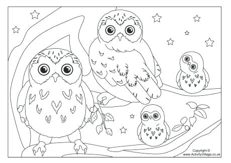 460x325 Owl Pictures Coloring Pages Guaranteed Owl Color Sheets Exciting