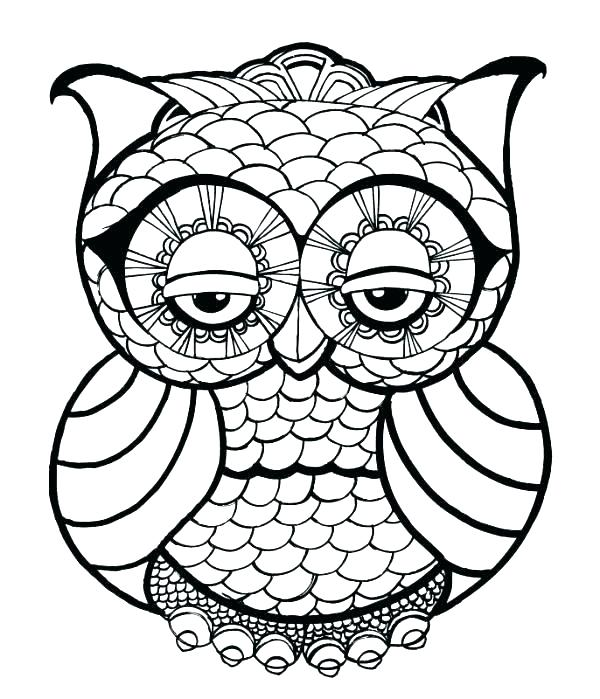 600x699 Owl Pictures To Color Or Cute Owl Coloring Pages To Print Fresh