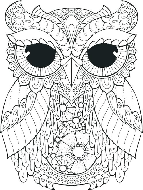 497x659 Coloring Pages Of Owls Good Owls Coloring Pages Or Coloring Pages