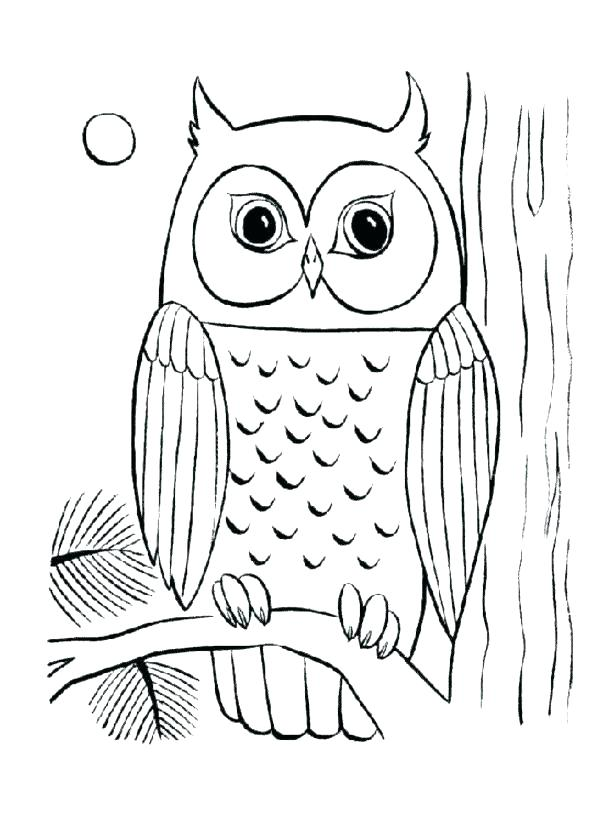 615x824 Cute Owl Color Sheets Baby Coloring Page Pages Of Medium Size