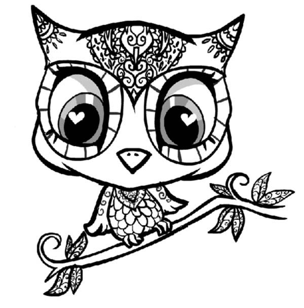 600x607 Coloring Pages Owls For Adults Pleasing Free Coloring Pages