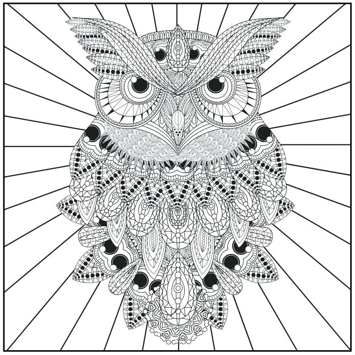 728x728 Coloring Pages Of Owls Owl Coloring Page Adult Club In Pages Owls