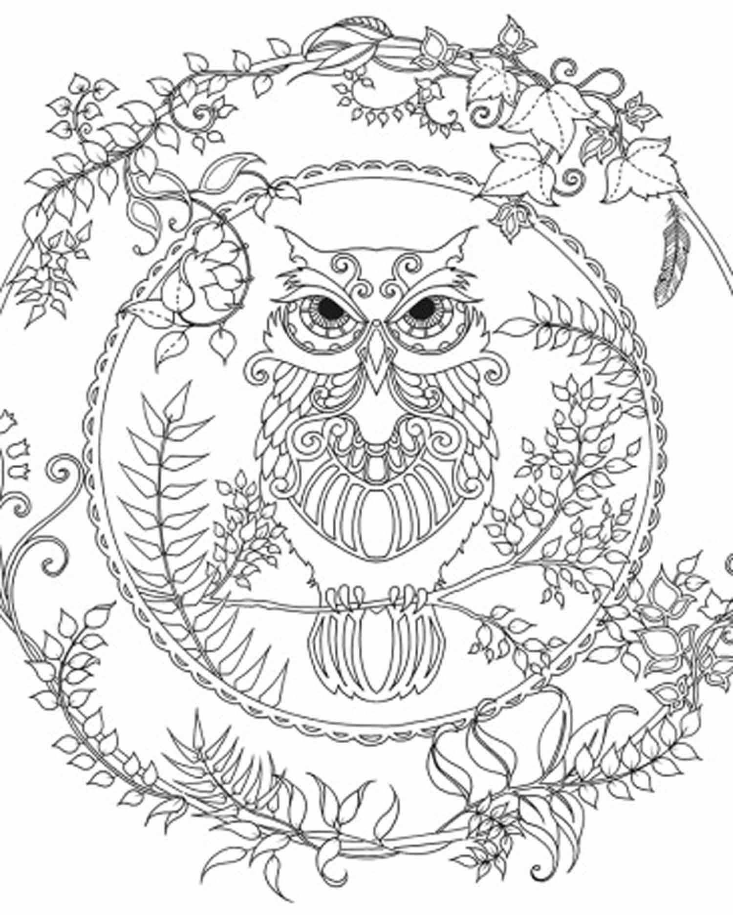 1500x1874 Enchanted Forest Owl Coloring Pages Colouring Adult Detailed