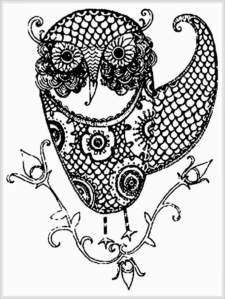 790x1046 Adult Owl Coloring Page