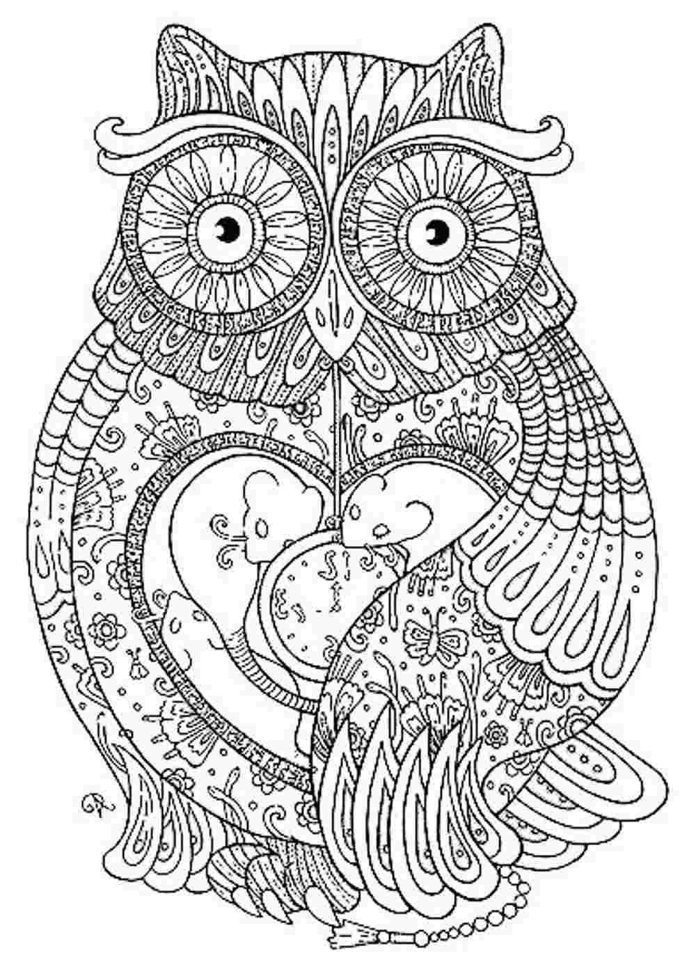 1000x1403 Awesome And Beautiful Owl Coloring Pages For Adults Printable Kids