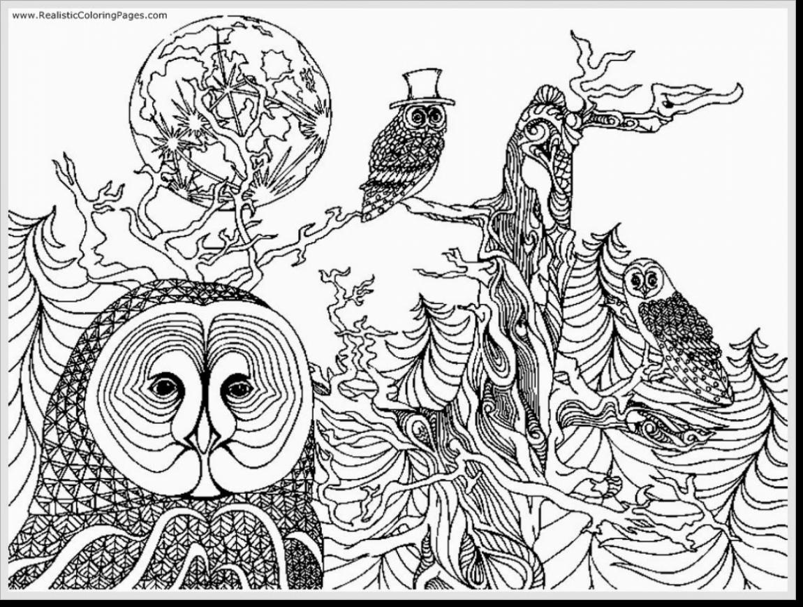 1150x869 Awesome Fantastic Printable Owl Coloring Pages Adult With Free