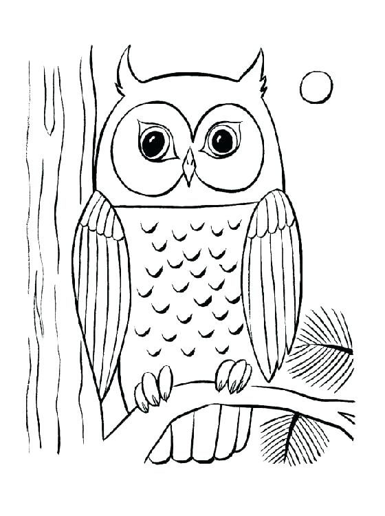 560x750 Hard Owl Coloring Pages Hard Coloring Pages Coloring Pages