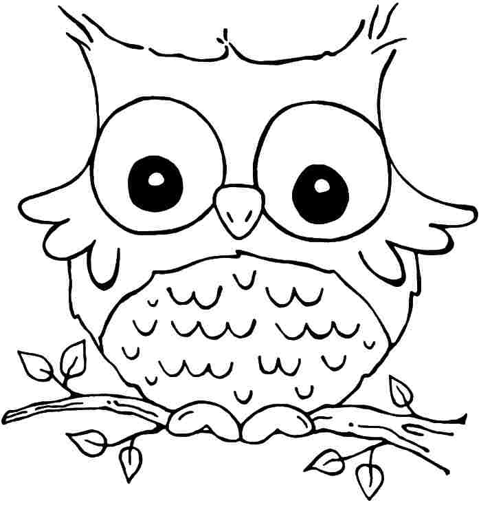 700x734 Owl Coloring Sheets Printable
