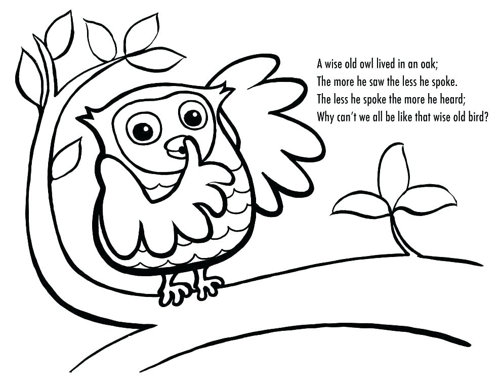 990x765 Owl Printable Coloring Pages Owl Coloring Book Also Owl Coloring