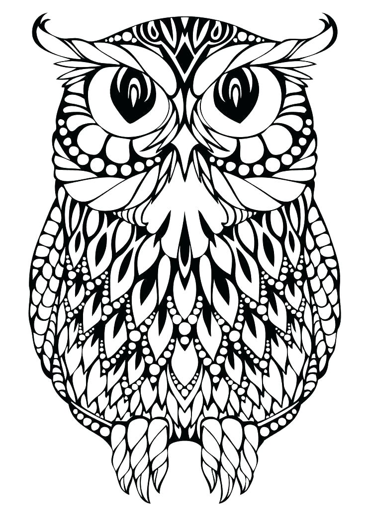 736x1041 Printable Owl Coloring Pages Barn Owl Coloring Pages Printable