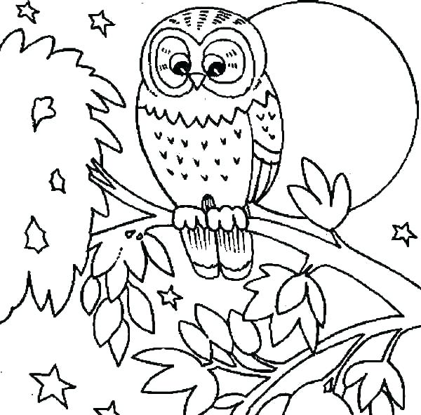 600x591 Snowy Owl Coloring Pages Snowy Owl Coloring Pages Page Burrowing