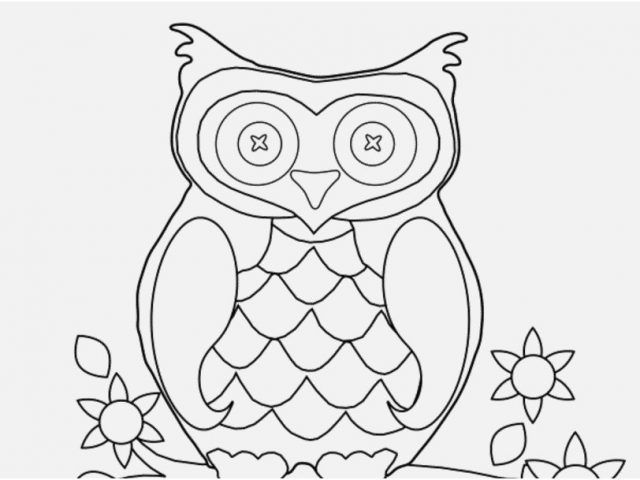 640x480 Free Owl Coloring Pages Adults Stock Owl Coloring Pages
