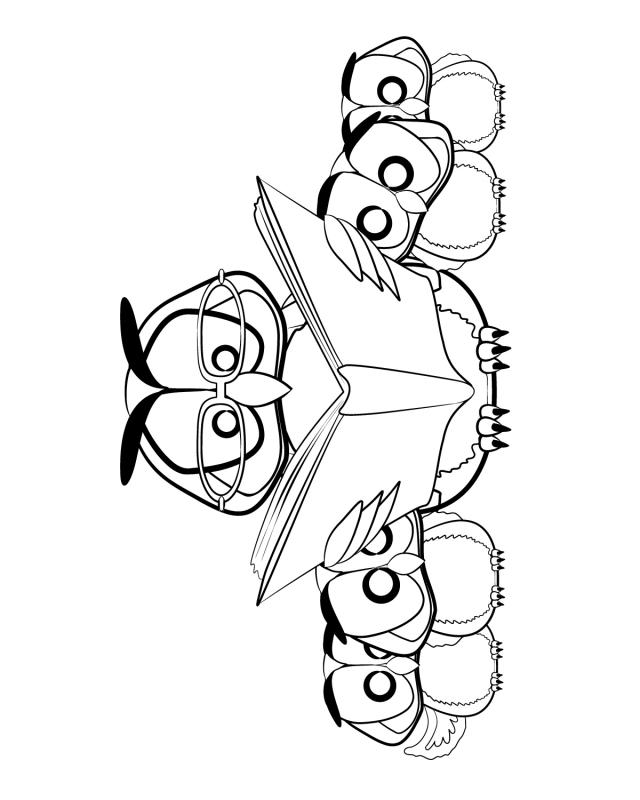 640x800 Free Printable Owl Pictures