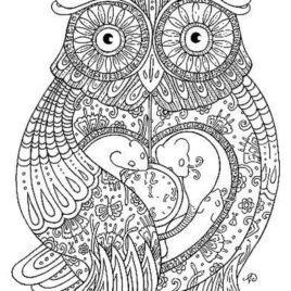 268x268 Owl Coloring Pages For Adults Printable Kids Colouring Pages