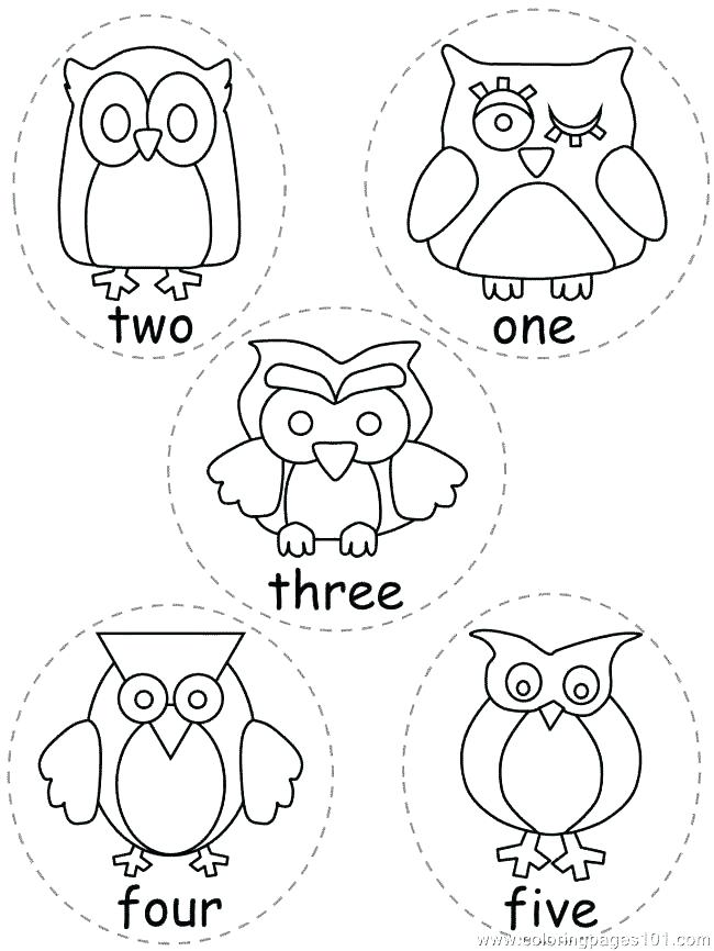 650x866 Owl Coloring Plus Free Printable Owl Coloring Pages For Kids Owl