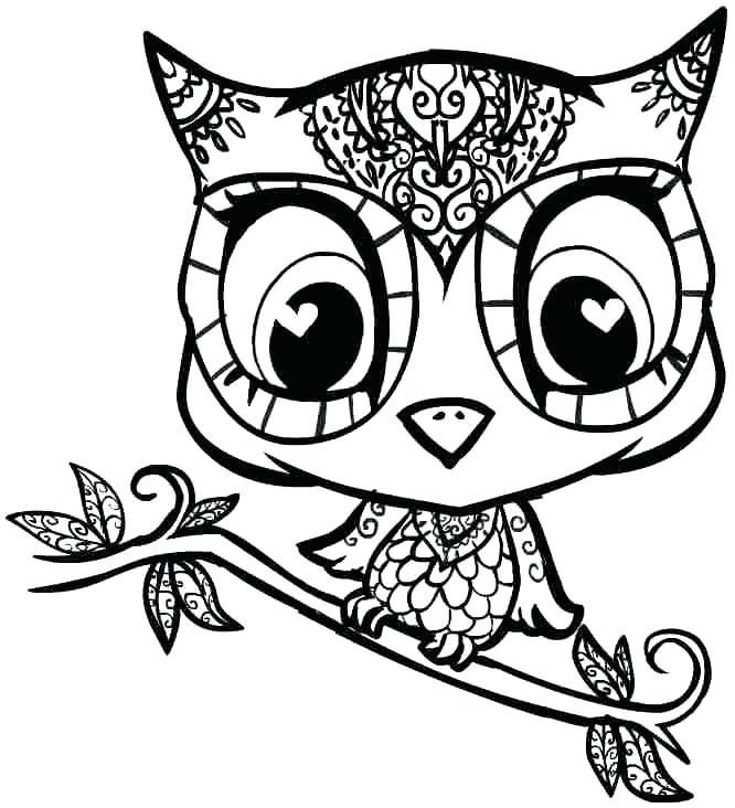 666x732 Owl For Coloring Printable Owl Coloring Pages Barn Owl Coloring