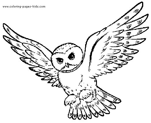 525x429 Smartness Design Owl Coloring Pages Free Printable Best Ideas