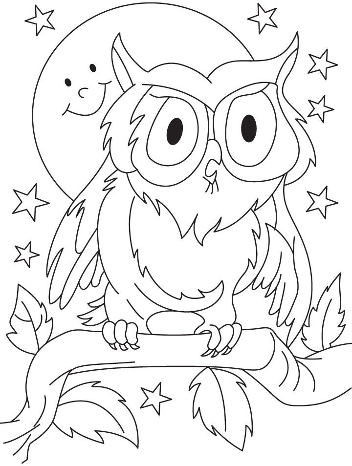720x954 Owl Coloring Pages For Preschoolers Coloring Pages For Kids