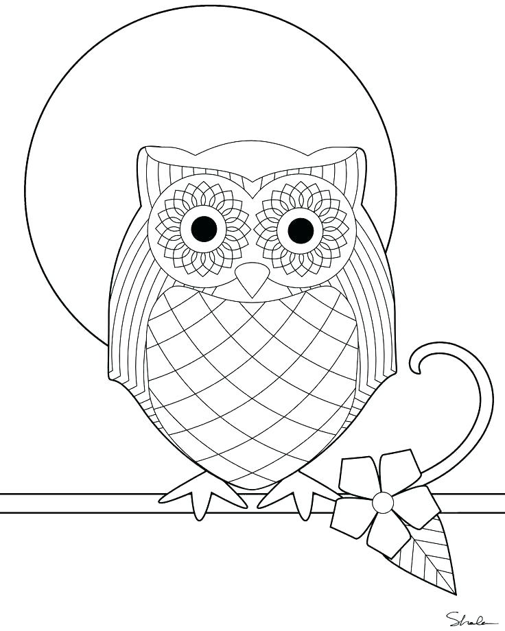 736x920 Owl Color Pages Snowy Owl Coloring Pages Owl Coloring Pages