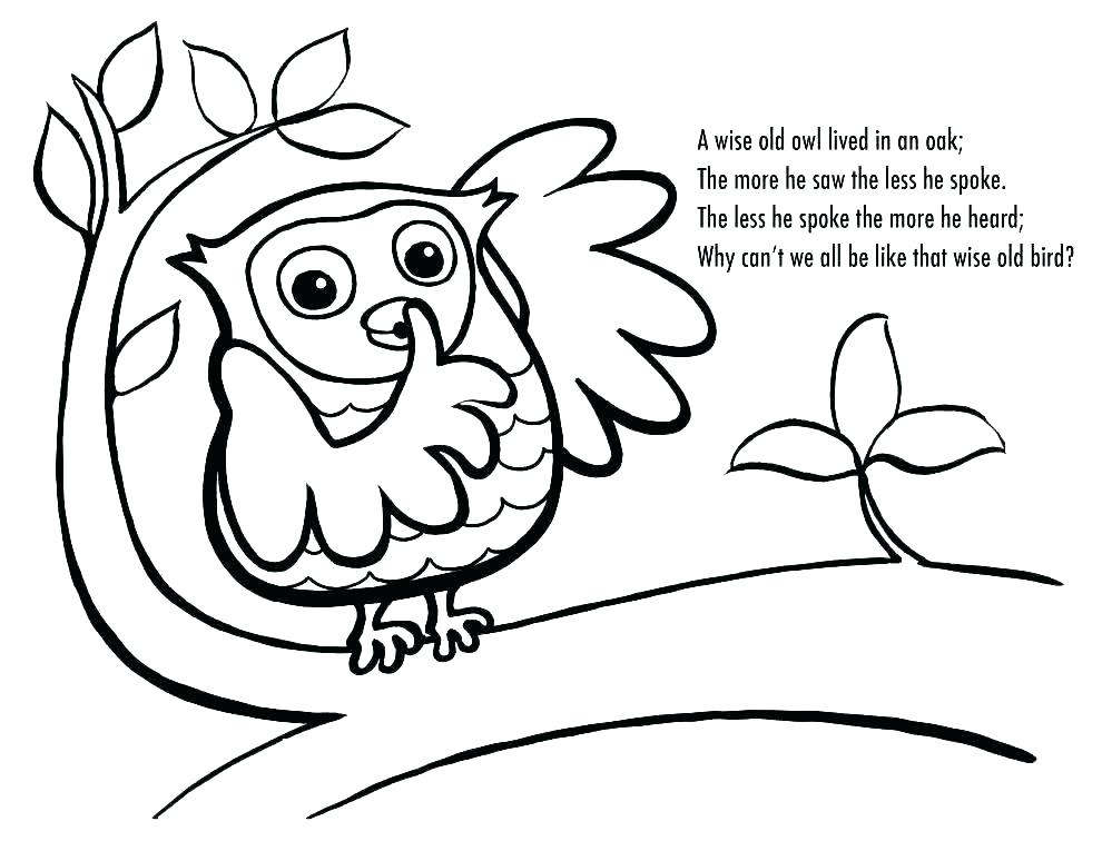 990x765 Owl Coloring Pages To Print Unique Owl Coloring Pages For Adults