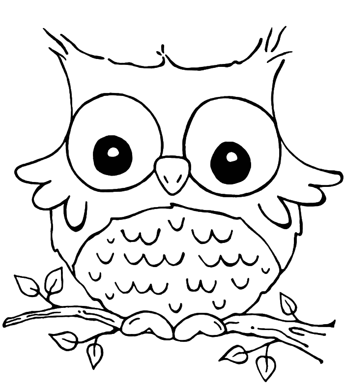 700x797 Baby Owl Coloring Pages