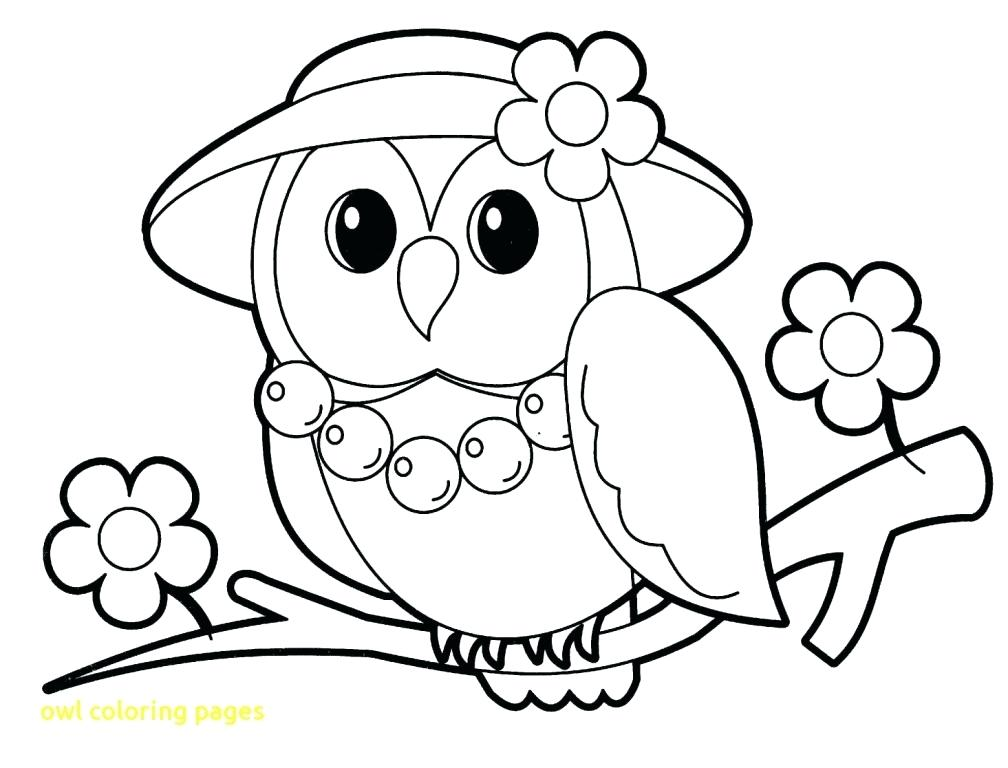 1008x768 Barn Owl Coloring Pages Printable With Best Free For Kids Nice Be