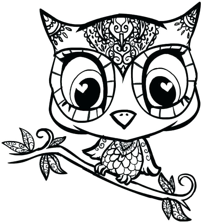 666x732 Owl Print Out Coloring Pages Free Printable Owl Coloring Pages