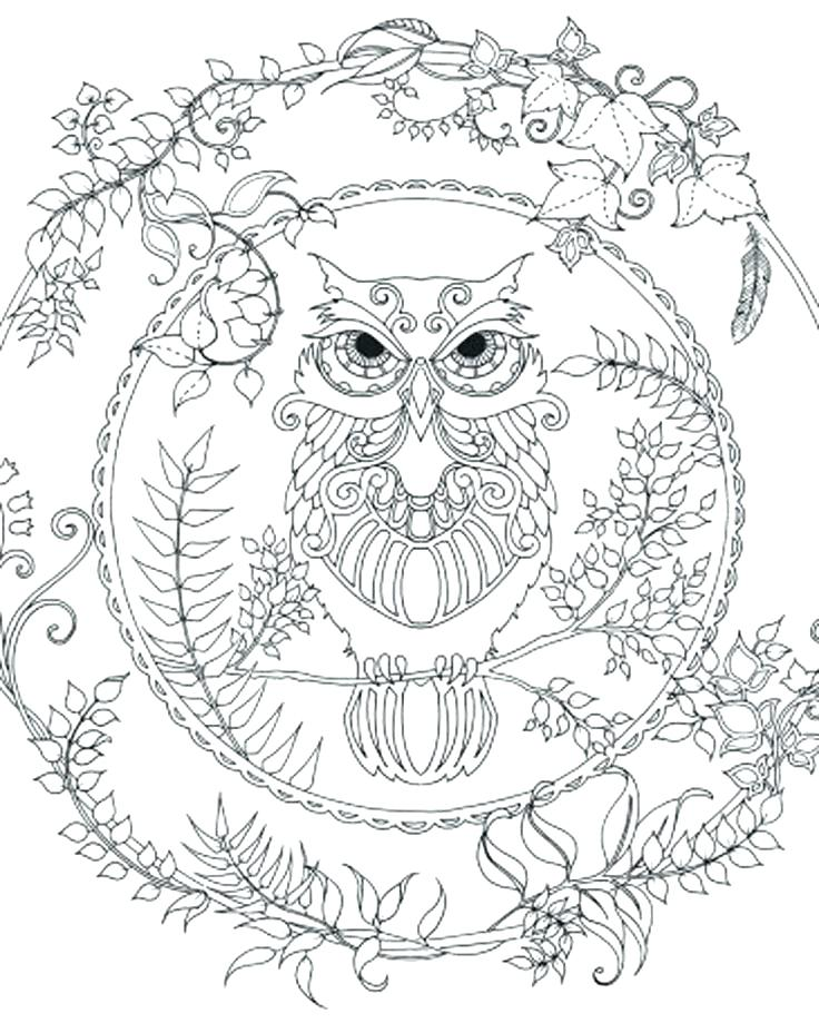 736x919 Owl Print Out Coloring Pages Page Barn Es Printable Exclusive Free