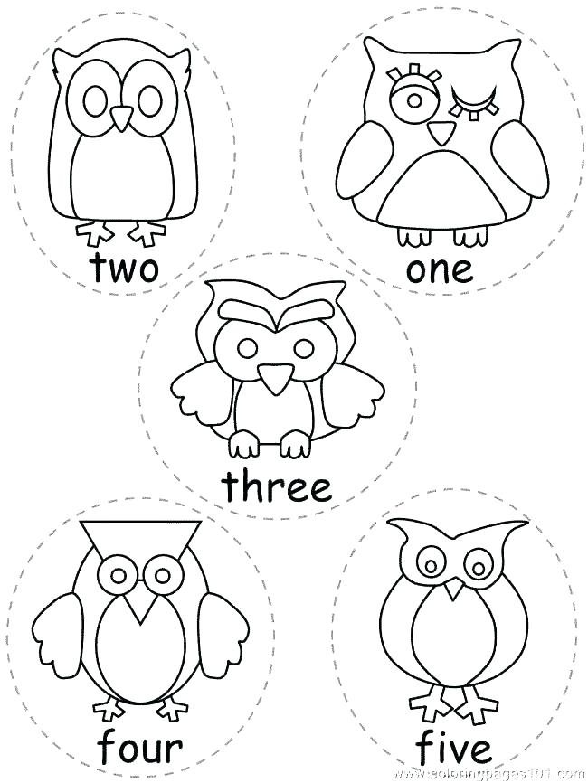 650x866 Print Out Coloring Pages Printable Owl Coloring Pages As Well As