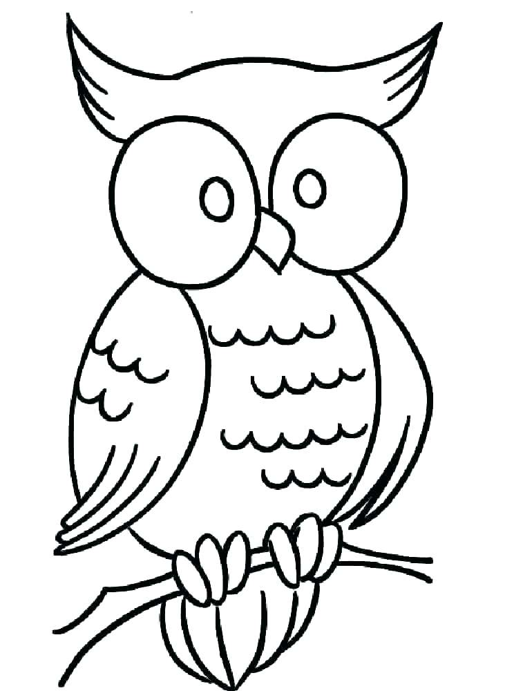 744x1000 Coloring Pages Of Owls Icontent