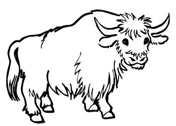 Ox Coloring Page