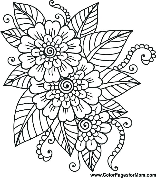photograph relating to Free Printable Coloring Pages for Adults Pdf named Paisley Coloring Webpages Pdf at  Cost-free for