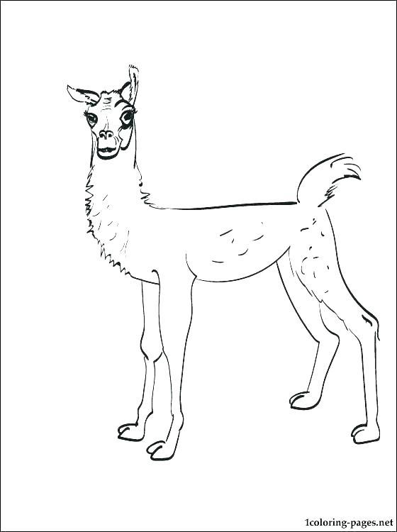 560x750 Llama Llama Coloring Pages Llama Llama Red Pajama Coloring Page