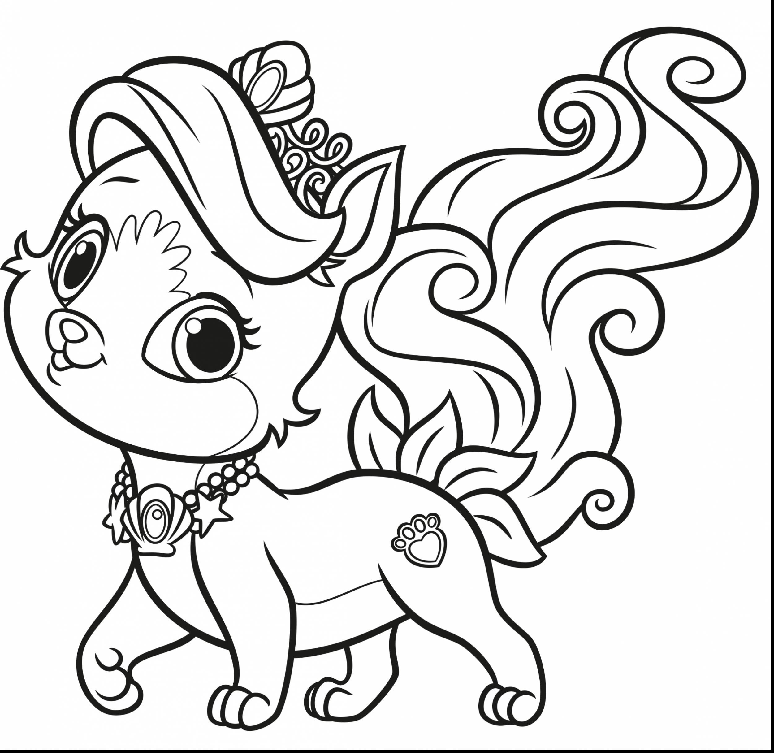 2501x2433 Challenge Palace Pets Coloring Pages