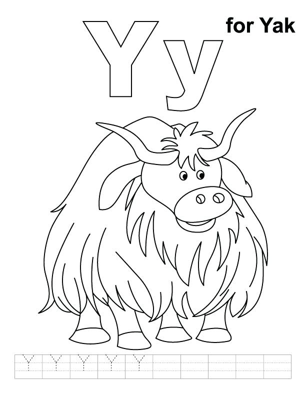 612x792 Yak Animal Coloring Pages Y For Yak Coloring Page With Handwriting