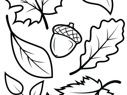 440x330 Leaf Printable Coloring Pages Leaf Printable Coloring Pages