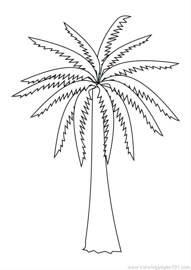 650x918 Bare Tree Branches Coloring Page Coloring Pages Of Trees Coloring