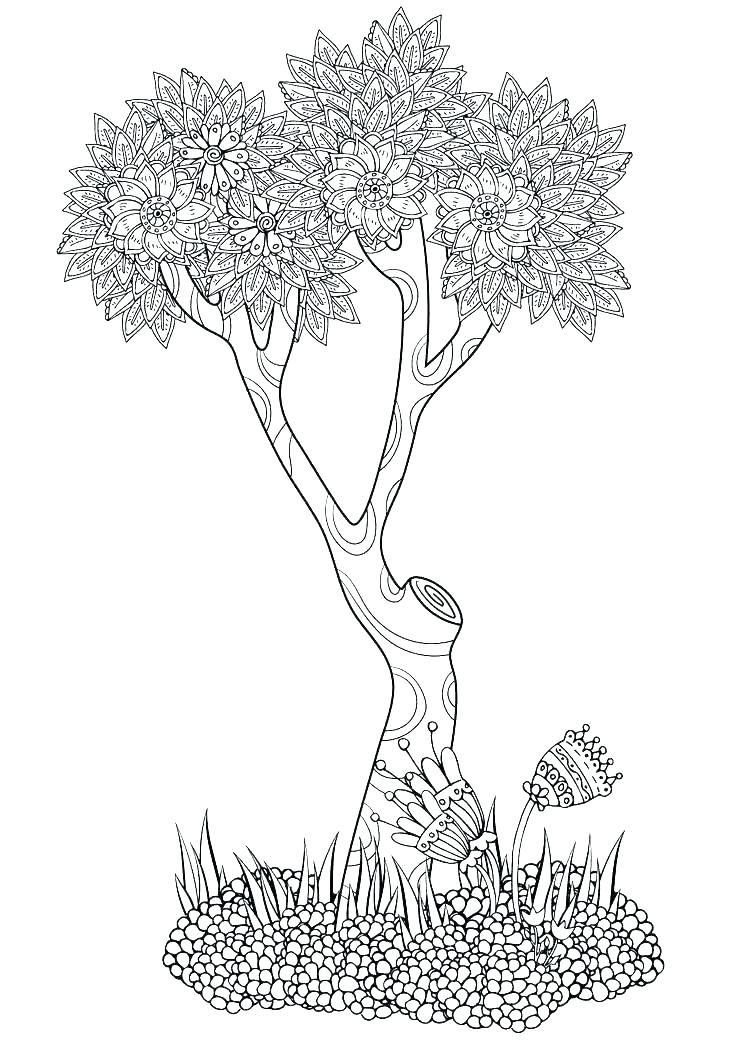 736x1041 Palm Tree Coloring Pages Tree Coloring Pages Palm Tree Coloring