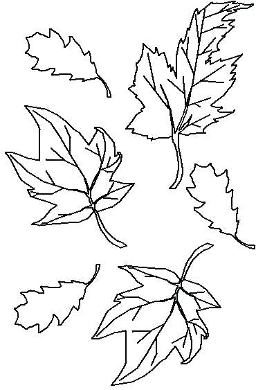 370x563 Leaves Coloring Pages Coloring Pages Fall Leaves Amazing