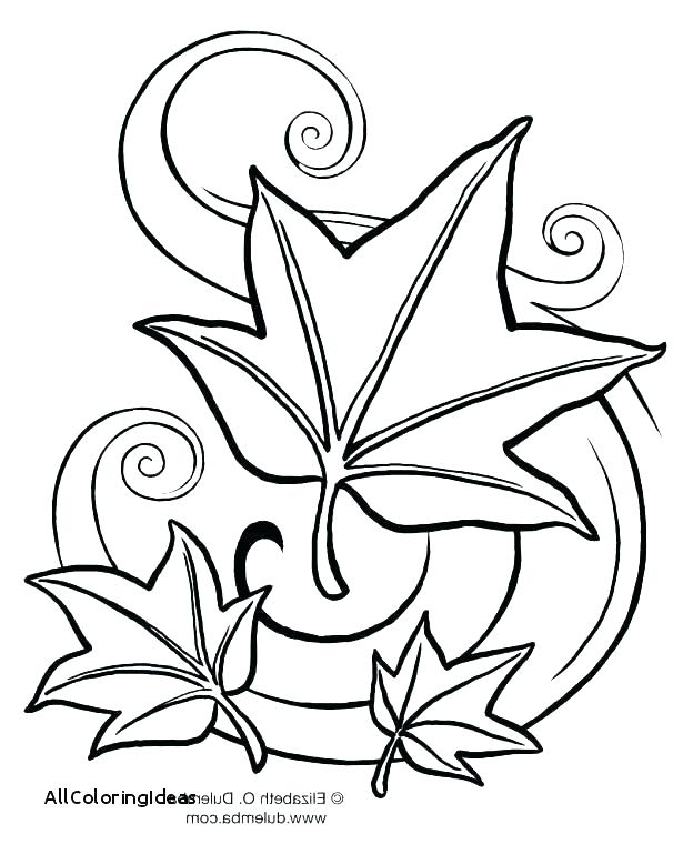 615x769 Palm Leaves Coloring Page Clover Coloring Pages Kids Drawing