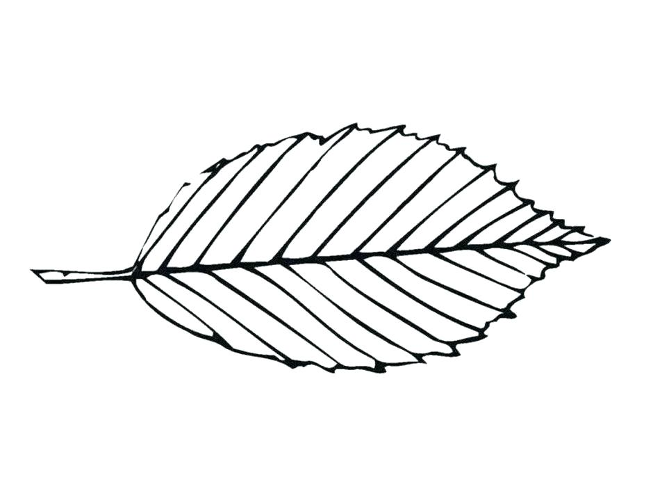 940x716 Coloring Page Leaf Big Leaf Coloring Pages Leaf Coloring Page Free