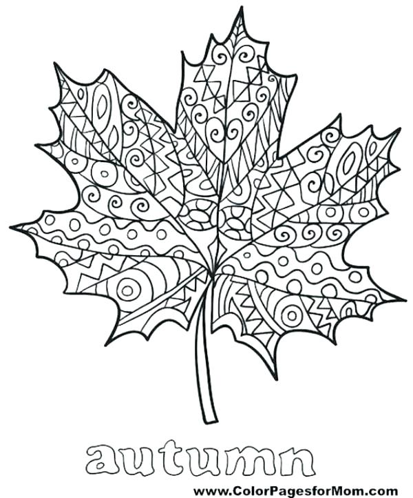 600x722 Coloring Page Of Leaves Leaf Coloring Pages Coloring Pages Fall