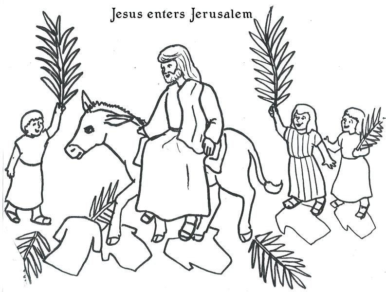 793x600 Palm Sunday Coloring Page Palm Coloring Pages Palm Sunday