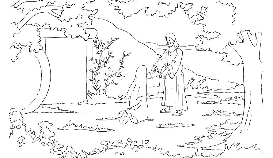 891x517 Palm Sunday Coloring Page Palm Coloring Sheet Palm Sunday Coloring