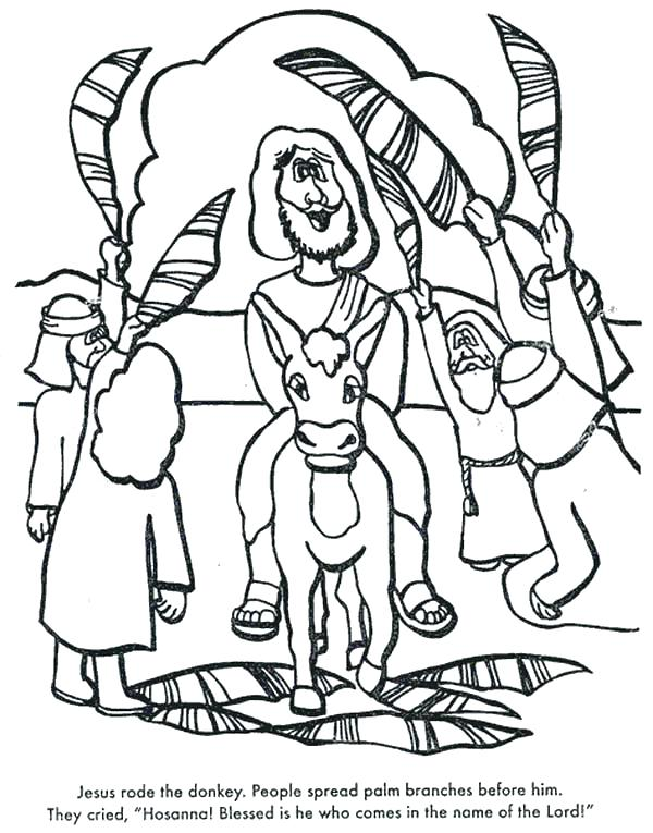 600x765 Top Rated Palm Sunday Coloring Pages Pictures Palm Coloring