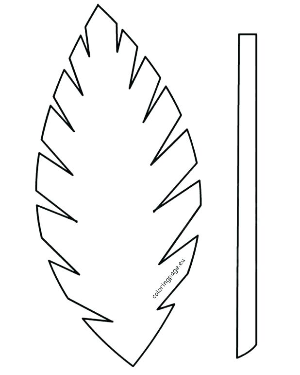 618x771 Palm Leaf Coloring Page Leaf Printable Template Craft Leaf