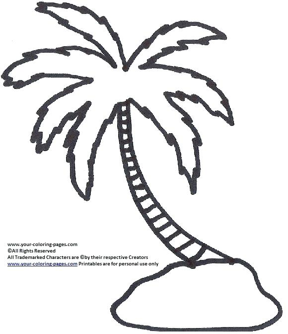 580x672 Palm Tree Coloring Page Coconut Tree Coloring Page Fan Picture