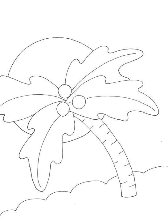 545x705 Palm Tree Coloring Page Palm Tree Leaves Coloring Pages